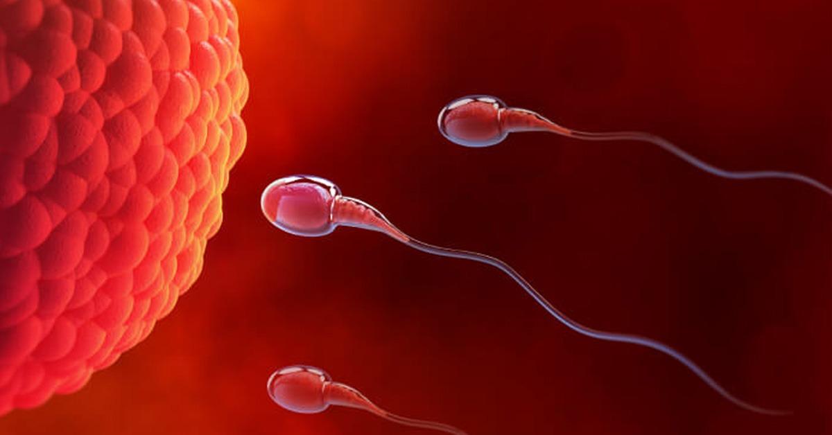 Best Ivf Fertility Center In Pune